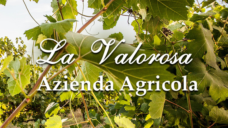 AZIENDA AGRICOLA LA VALOROSA
