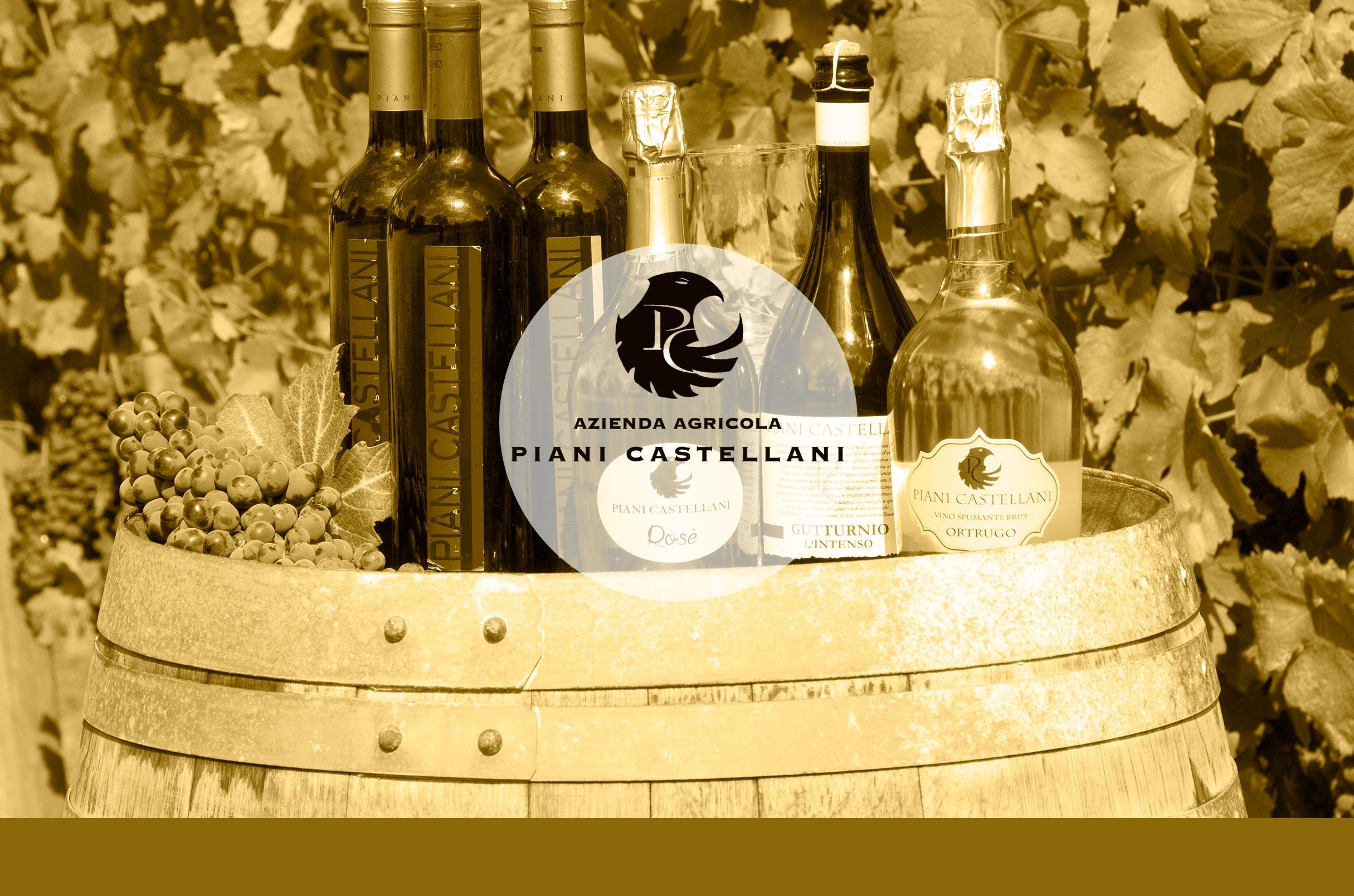 L'azienda e i vini